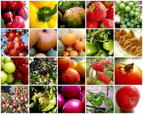 fruit-vegetable-mosaic1